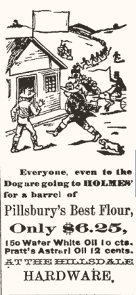 Ad from 1891 Hillsdale Harbinger